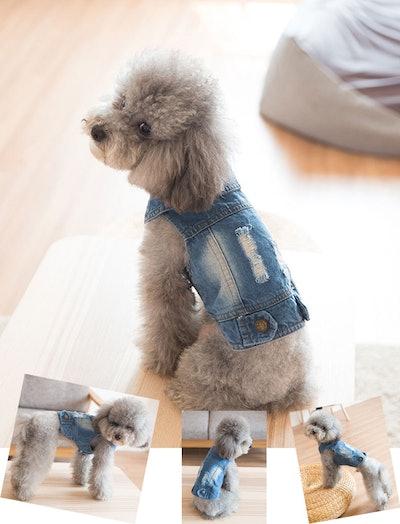 Dog Jeans Jacket