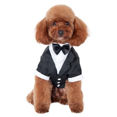 Wedding Shirt Formal Tuxedo With Bow Tie