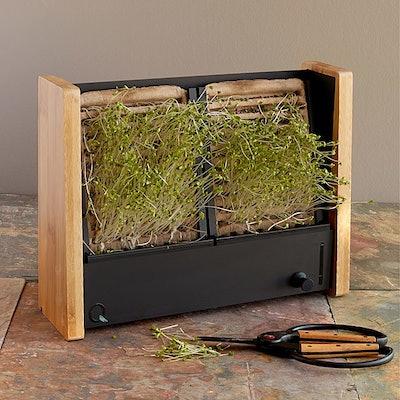 Microgreen Vertical Garden