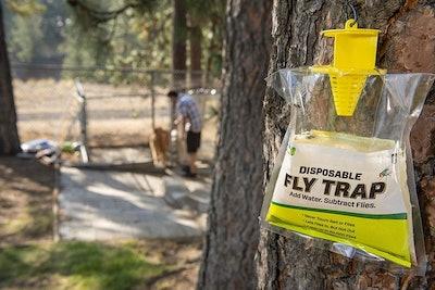 Rescue Disposable Non-Toxic Fly Trap