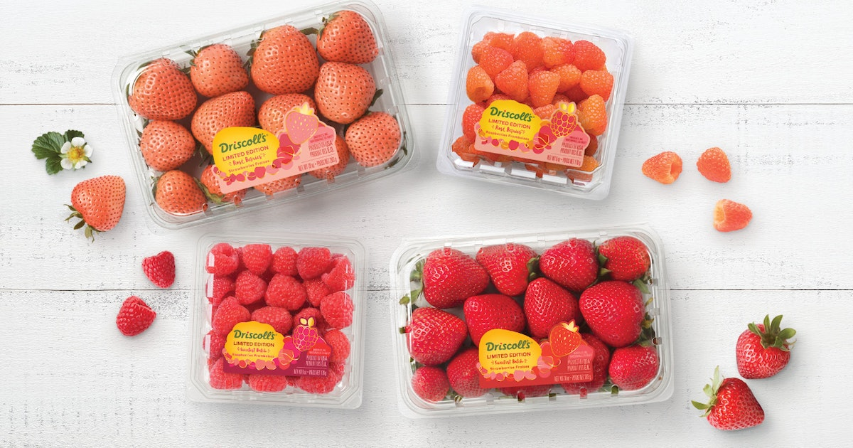 Driscoll's Rose Strawberries & Berries Are Here Just In Time For Summer