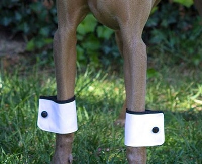A Pair Of Dog Cuffs