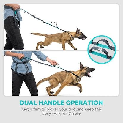 TaoTronics Hands-Free Dog Leash