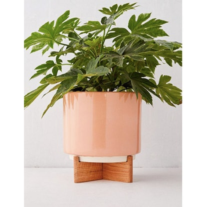 """Cecily 10"""" Planter + Stand"""