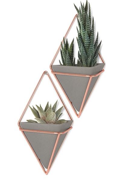 Umbra Hanging Planters (Set of 2)