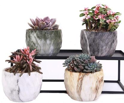 winemana Ceramic Succulent Planters (Set of 4)