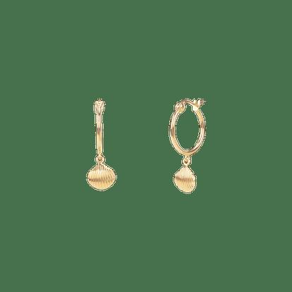 Striped Shell Earrings
