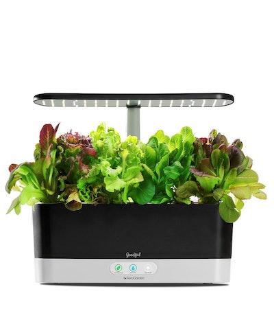 Goodful Harvest Slim Countertop Garden & Gourmet Herbs Seed Kit