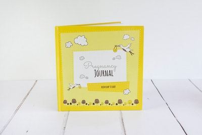 Pregnancy Journal For All Types Of Family