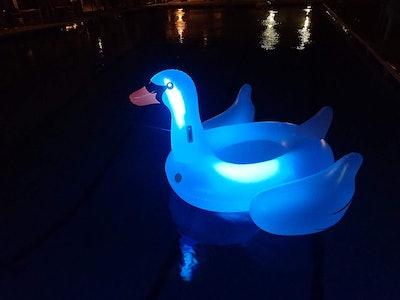 Swimline Giant LED Light Up Swan Float