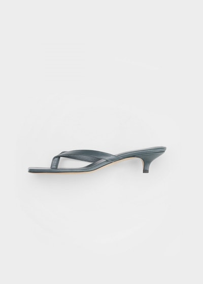 The Flip-Flop Heel Blue