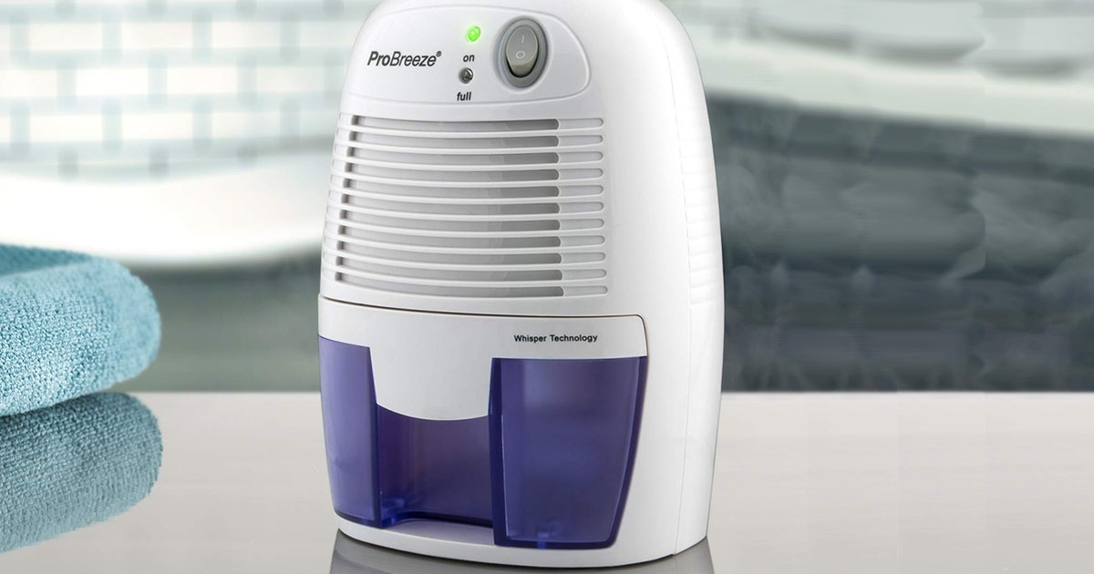 The 3 Best Portable Dehumidifiers