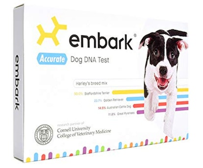 Embark Dog DNA Test with Health Results