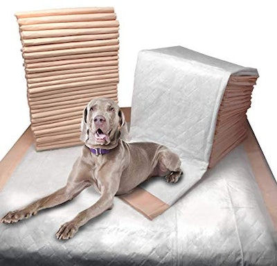 Mednet Direct Ultra Absorbent Pet Training and Puppy Pads for Dogs and Pets