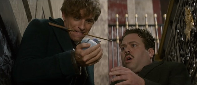 Magical movies: 'Fantastic Beasts and Where to Find Them'
