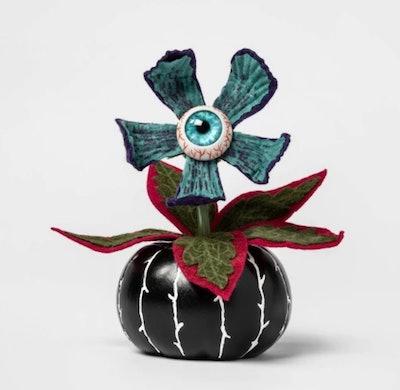 Creepy Succulent in Black Pumpkin Halloween Décor - Hyde and Eek! Boutique