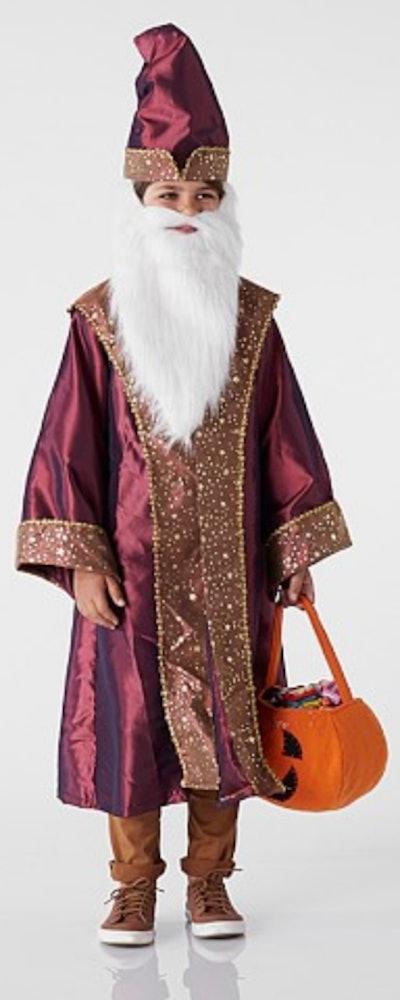 HARRY POTTER™ Dumbledore™ Costume