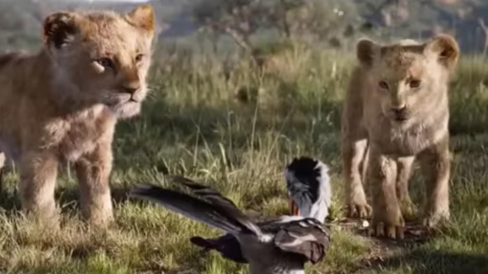 Who Voices Young Nala In The Lion King Shahadi Wright
