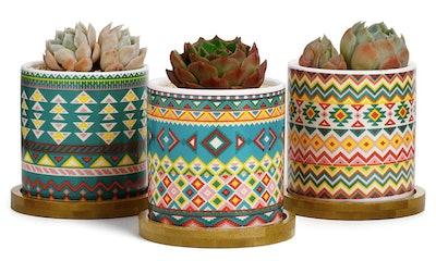 Greenaholics Succulent Plant Pots (Set of 3)