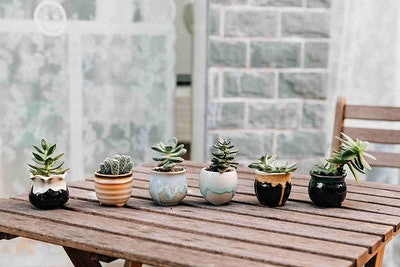 T4U Mini Ceramic Succulent Pots (Set of 6)