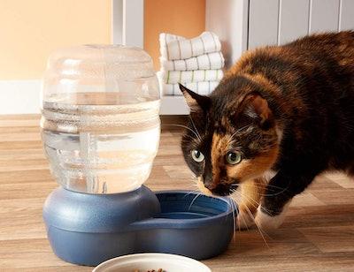 Petmate Replendish Gravity Waterer