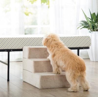 Zinus 3-Step Comfort Pet Stairs