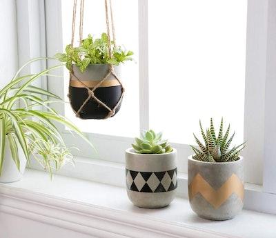 Mkono Cement Succulent Planters (Set of 3)