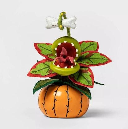 Creepy Succulent in Pumpkin Orange Halloween Décor