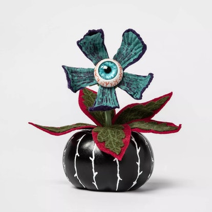 Creepy Succulent in Black Pumpkin Halloween Décor