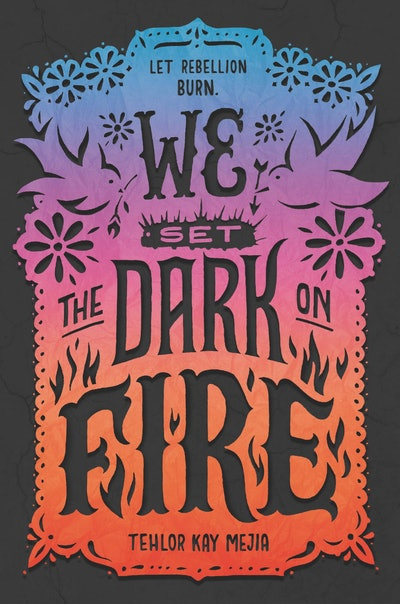 'We Set the Dark on Fire' by Tehlor Kay Mejia