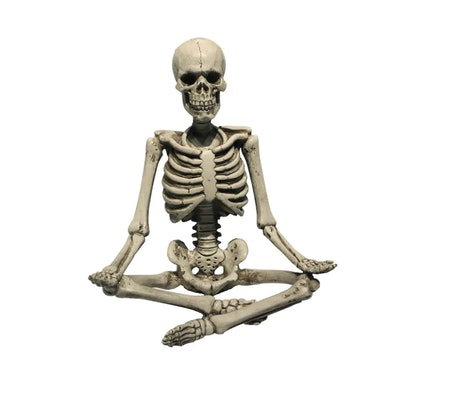 "11"" Yoga Skeleton"
