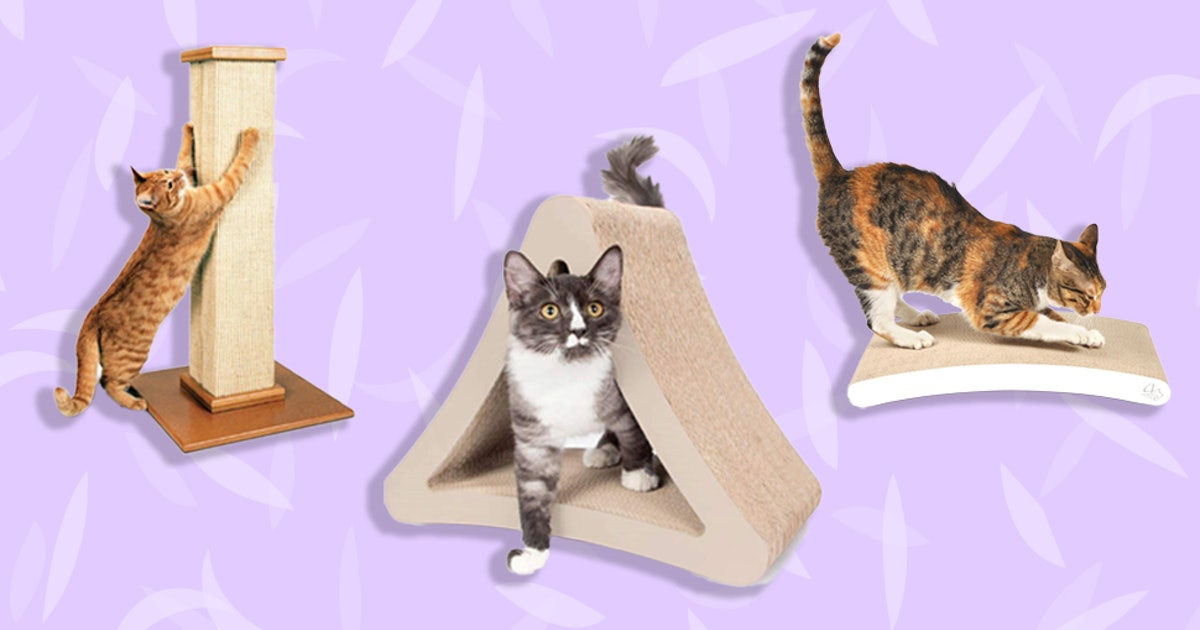 The 3 Best Cat Scratching Posts To File Nails