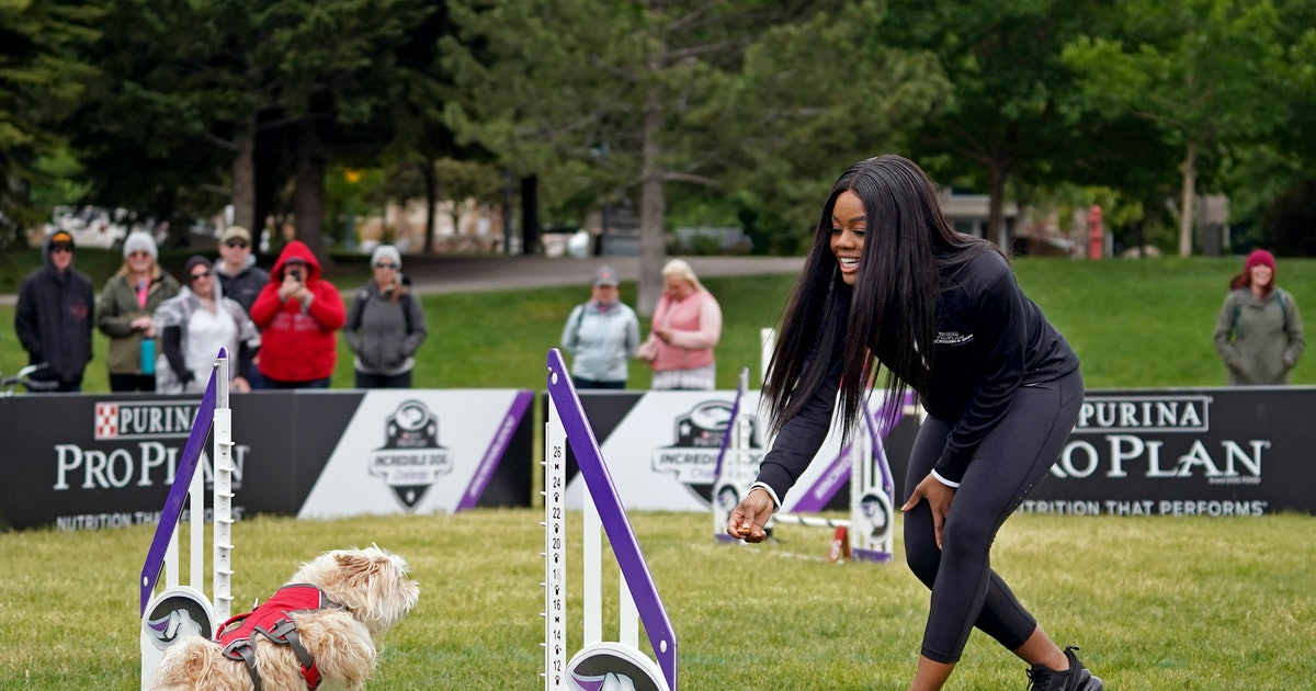 Gabby Douglas' Dogs Help Her Stay Active