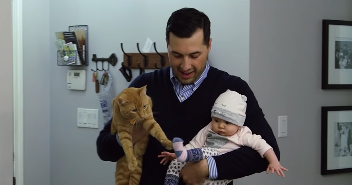 Where Is Jinger Duggar's Cat? Jeremy Vuolo Shares An Update About Their Family Pet