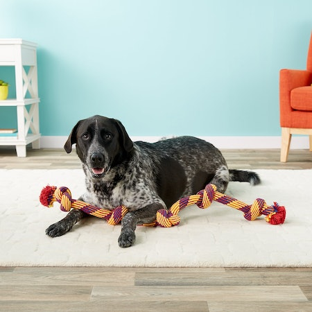 Mammoth Knot Tug for Dogs