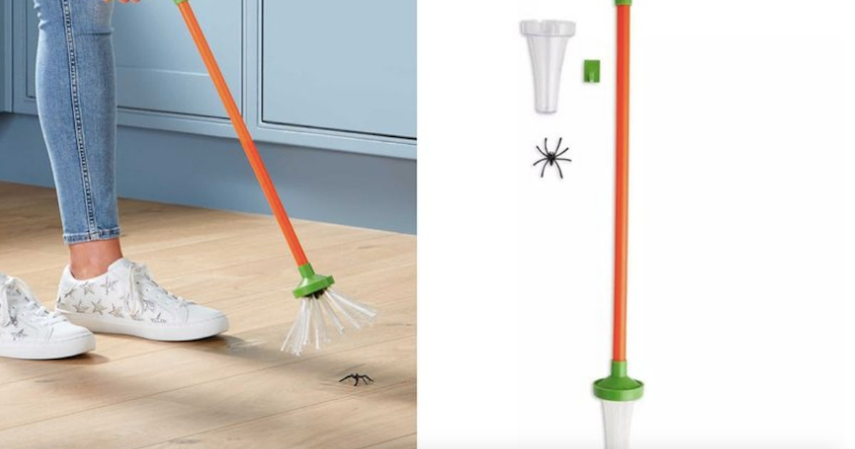 Aldi's Spider Catcher That Doesn't Hurt Spiders Is A Game Changer