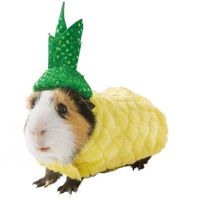 Thrills & Chills Pineapple Small Pet Costume
