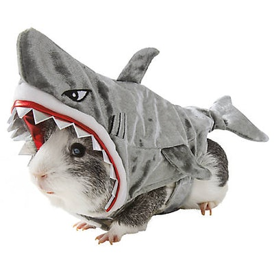 Thrills & Chills Shark Small Pet Costume