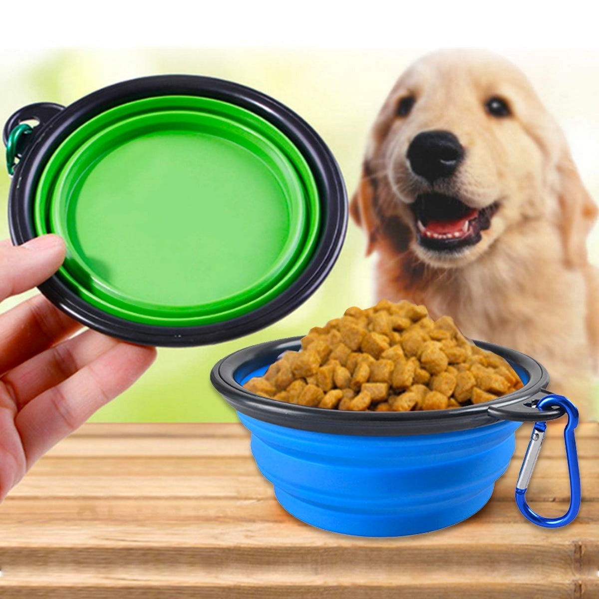 BLEDS Collapsible Dog Bowls (2 Pack)