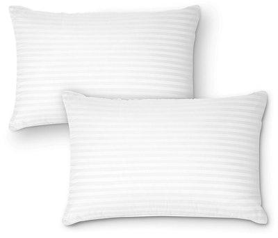 DreamNorth Premium Gel Pillows (2-Pack)