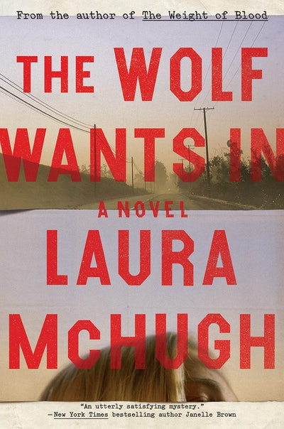 'The Wolf Wants In' by Laura McHugh