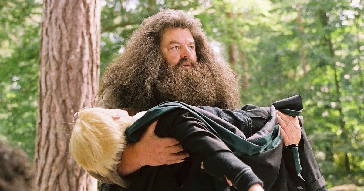 This 'Harry Potter' Theory About Hagrid Being A Death Eater Will Blow Your Mind