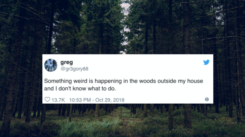 7 Twitter Horror Stories To Read If You Followed