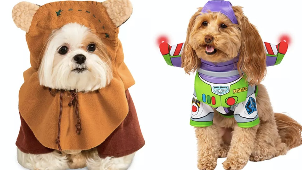 d1feba80577 Disney's Pet Halloween Costumes For 2019 Are Here