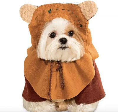 Ewok Costume for Pets by Rubie's – Star Wars