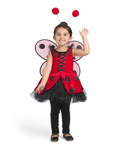 Toddler Ladybug Fairy Costume