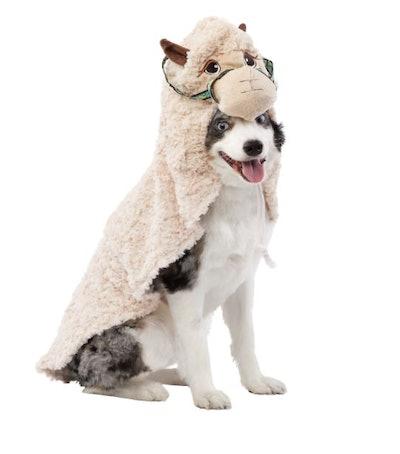 Halloween Llama Pet Costume
