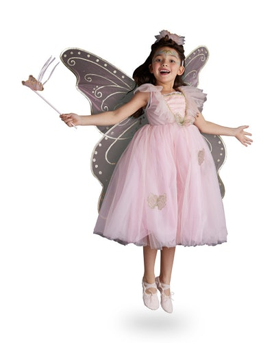Deluxe Enchanted Fairy Costume