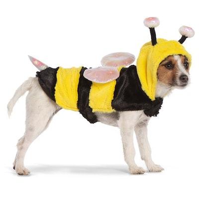 Halloween Bumblebee Pet Costume - Light-Up