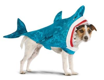Halloween Shark Pet Costume
